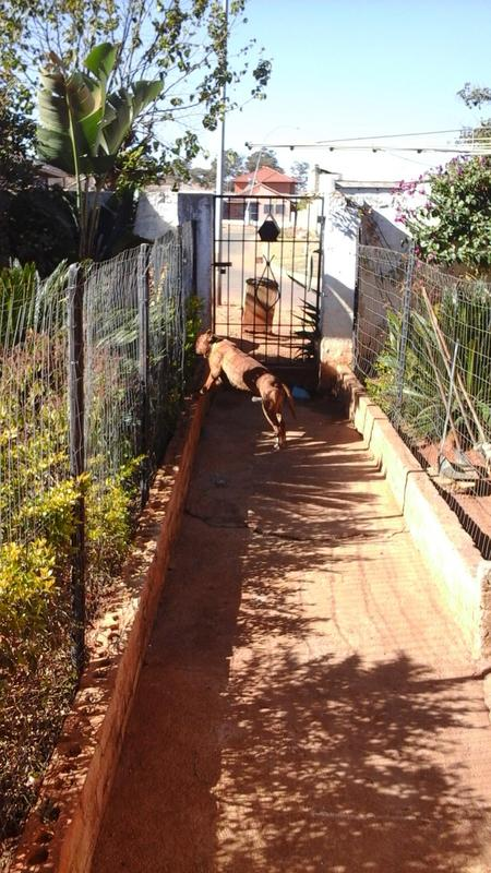 Property For Sale in Lenasia South, Johannesburg 15